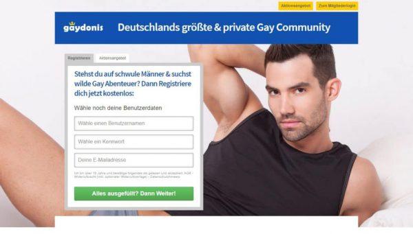 Gaydonis.com